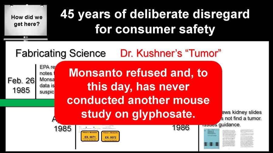 Monsanto refused and, to this day, has never conducted another mouse study on glyphosate.
