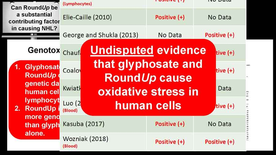 Undisputed evidence that glyphosate and RoundUp cause oxidative stress in human cells