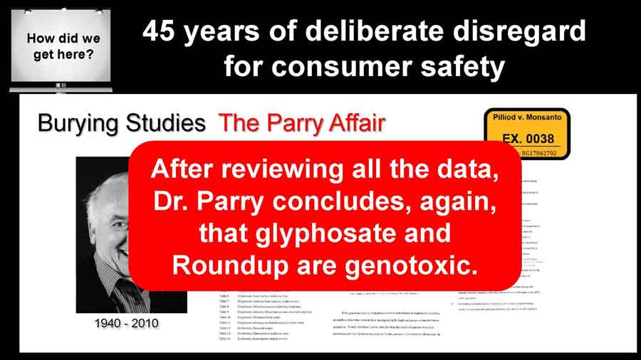 After reviewing all the data, Dr. Parry concludes, again, that glyphosate and Roundup are genotoxic